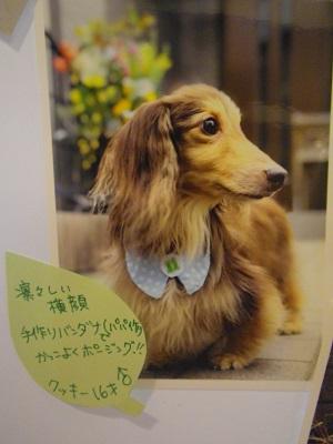 福田クッキー