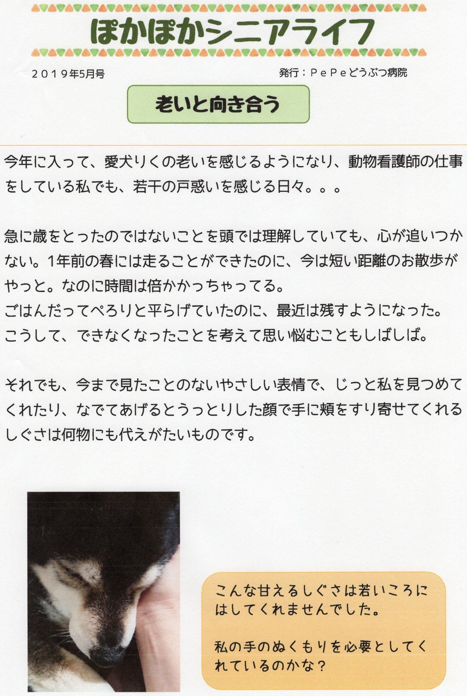 ぽかぽか201905-1