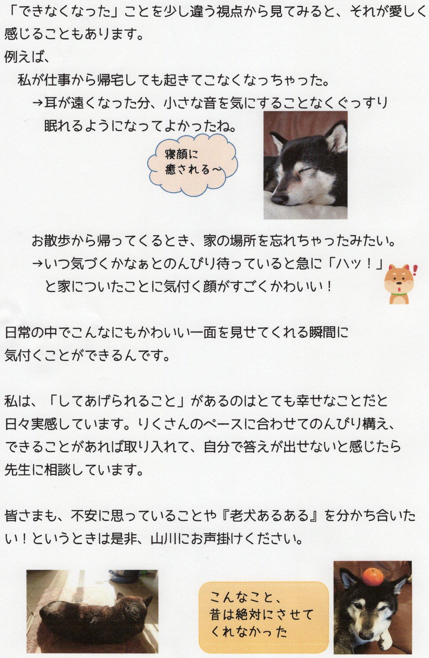 ぽかぽか201905-2