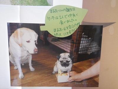 斉藤まるお・ピース