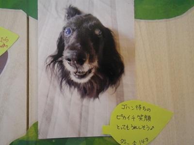 永井ダニー2019