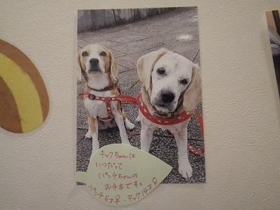 佐久間パンチキック2019
