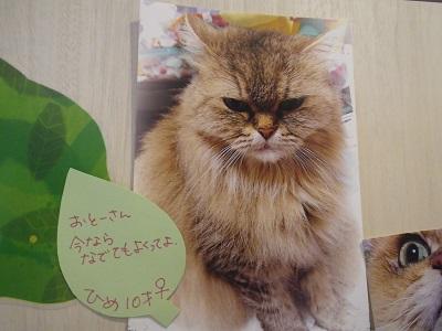 澤口ひめ2019