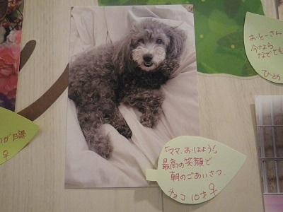 辻谷チョコ2019